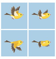 flying american goldfinch fem animation sprite vector image vector image
