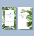 tropical leaves frames vector image