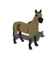 beautiful horse vector image