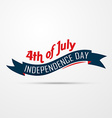 american independence day design vector image