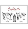 cocktails and alcohol drinks hand drawn vector image