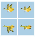 flying european siskin female animation sprite vector image vector image