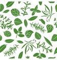 Herbes de Provence seamless pattern set vector image vector image