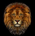 lion color realistic portrait a lions head vector image vector image