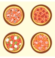 Pizza Set A Variety Of Types vector image