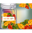 autumn leaves in a jar on blurry background vector image vector image
