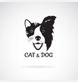 dog face border collie and cat face on a white vector image vector image