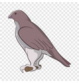 falcon icon cartoon style vector image vector image