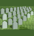 grave yard vector image vector image
