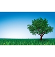 Tree on green field vector image vector image