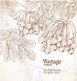 Vintage rowan backround for your text vector image vector image