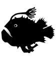 anglerfish vector image vector image