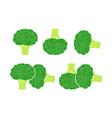 broccoli cabbage vector image vector image