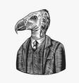 california condor gentleman american bird in vector image vector image