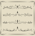 calligrpahic curled divider and decorative vector image