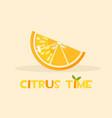 citrus orange hello summer time vector image vector image