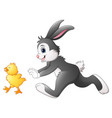 happy bunny with chick playing in the park vector image vector image