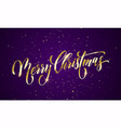 merry christmas greeting card golden confetti vector image
