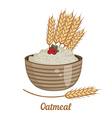 Oatmeal isolated on white background vector image