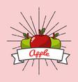 Red and green apple fruit organic vitamins emblem