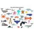 set water and ocean animals vector image