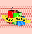 shopping bags packages and words big sale on pink vector image vector image