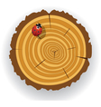 wooden cut and ladybird vector image vector image