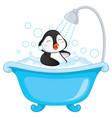 of penguin bathing vector image