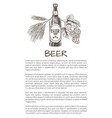 bottled beer with wheat and hop decoration poster vector image