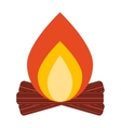 campfire wood flame icon vector image