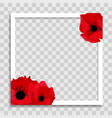 empty photo frame template with spring poppy vector image vector image