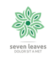 leaves circle ecology floral design vector image vector image