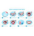 sequence designs showing how to brush teeth vector image