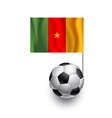 Soccer Balls or Footballs with flag of Cameroon vector image