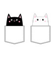 black white cat love couple in pocket pink vector image vector image