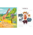 cartoon african animals concept vector image vector image