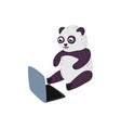 cartoon panda sitting with laptop ta knees vector image vector image