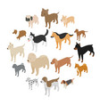 dog icons set isometric 3d style vector image