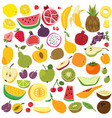 fruits set cute fruit lemon watermelon banana vector image vector image
