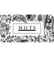 hand drawn nut wreath design vector image vector image