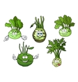 Kohlrabi cabbage vegetables cartoon characters vector image vector image