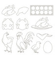 chicken icons set vector image