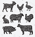 Hand Drawn Farm Animal Set vector image