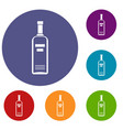 bottle of vodka icons set vector image vector image