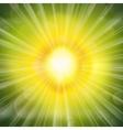 Green Glow vector image vector image