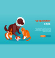 horizontal and isometric veterinary banner vector image vector image