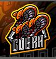 king cobra head esport mascot logo design vector image vector image