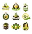 Olive Ild Badges vector image vector image