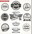 retro vintage badges and labels collection vector image vector image