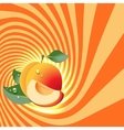 Striped spiral apricot patisserie background vector image vector image